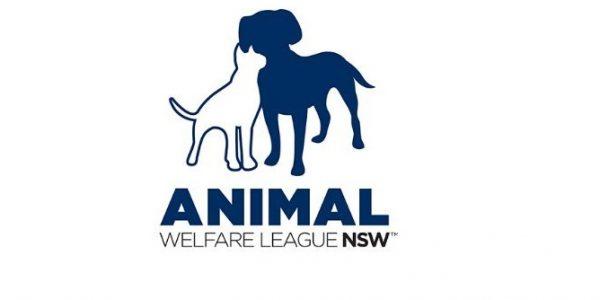AWL NSW