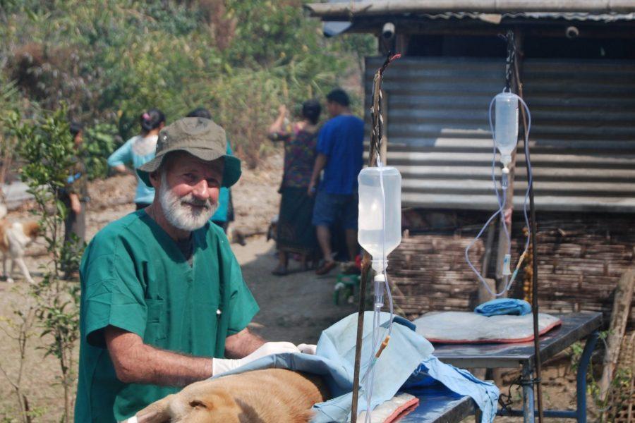 We deploy experienced veterinary volunteers to animal welfare organisations in need