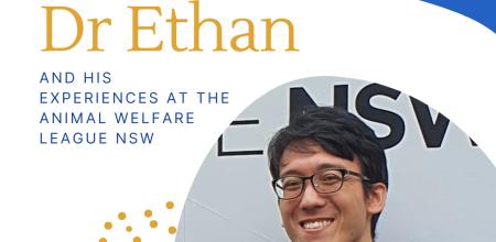 Veterinarian volunteer Spotlight: Dr Ethan